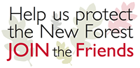 Join NFA