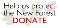 Donate to NFA